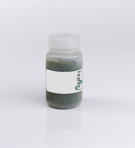 Pesticide Residues (multi-residues) in Kiwi Fruit Purée Food Chemistry Proficiency Test